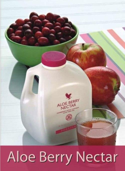 Aloe-Berry-Nechtar