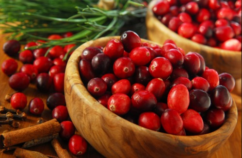 Cranberries-infeccao-urinaria