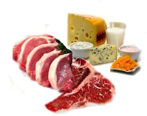 proteinas-aniamles-alimentos-para-ganar-masa-muscular-dietas-calorias-como-bajar-de-peso-adelgazar