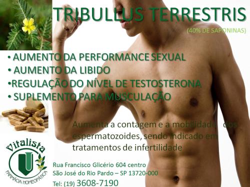 TRIB. TERRESTRIS